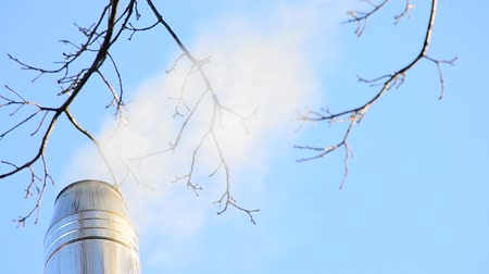dal : White smoke or steam coming out of stainless steel chimney on light blue sky background with some leafless tree branches