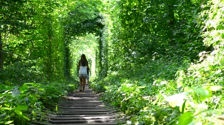 crosstie : Young slim teenager girl walks away from camera in a natural green forest on railway. Shot in the Tunnel of Love near Klevan, Ukraine, in summer. Stock Footage