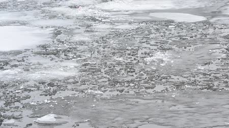 wavelet : Thaw. Pieces, blocks and floes of melting ice float on grey water surface with waves in cold spring time.