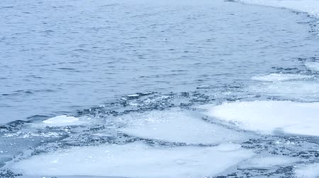 wavelet : Floes and smaller pieces and blocks of ice floating on grey water surface with waves in late winter or early cold springtime Stock Footage