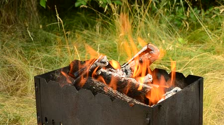 brasão : Wooden logs burning in a brazier in summer outdoors