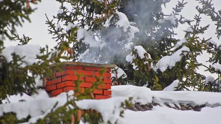 çatı : house chimney detail with smoke comming out of it among snow covered pine trees in forrest