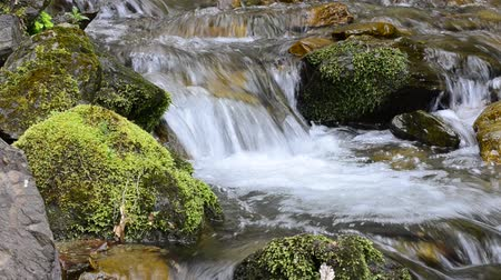 tripping : Mountain stream, small waterfall water flow