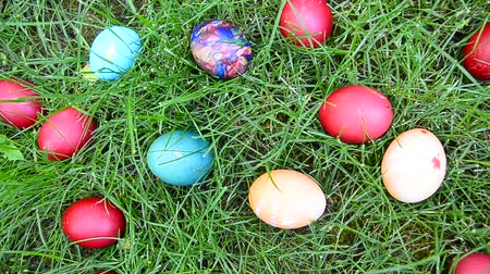 koszyk wielkanocny : Easter egg hunting in grass, closeup Wideo