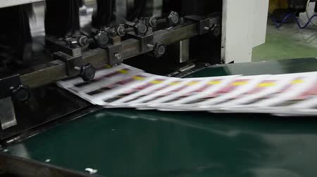 dijital : finished brochure magazine goes on the packaging line after it is printed on the web offset hit set press Stok Video