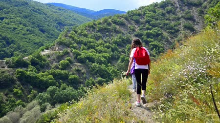 etkinlik : Children  having fun while hiking in mountain path. Playful children in outdoor activity navigation. Stok Video