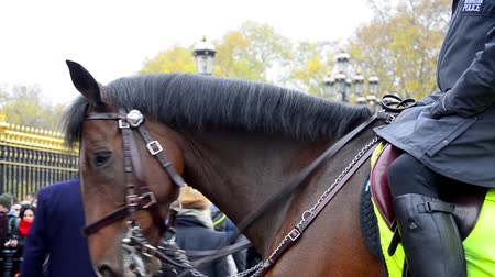 officier : Londres membres police métropolitaine cavalerie en poste au Horse Guards, au cours de la modification de la cérémonie de la garde. Zone contre la therorism.