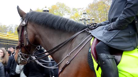 охранять : LONDON, UK Members metropolitan police Cavalry on duty at Horse Guards during Changing of the Guard ceremony. Area against the therorism.
