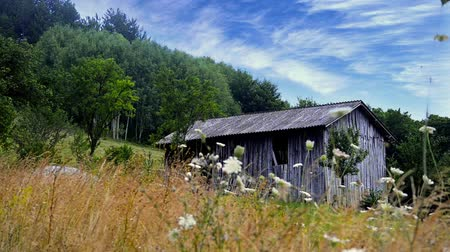 istálló : old western shed, barn in mountain meadow, stock video