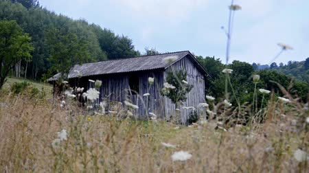 навес : old western shed, barn in mountain meadow, pannning shoot stock video