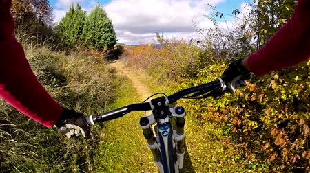 point of view pov : An extreme mountain biker speeds down a bike trail in the forest during the day