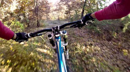 lesiklás : Downhill bike cycling. Riding a bicycle through autumn forest