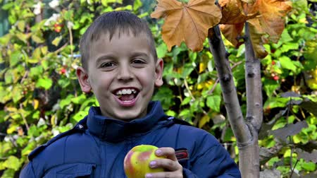 sağlıklı beslenme : Happy boy eating an apple and smiling, HD stock video