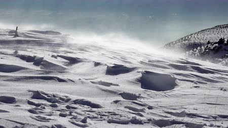 deep snow : 4k Snow flurries blowing across an arctic landscape, uhd stock video Stock Footage
