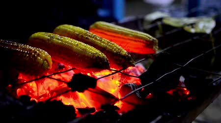 faszén : Corn on coal barbecue grill at night, steadycam shot f1.8