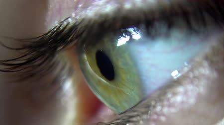 hipnoza : Close-up of green female eye blink and iris focusing