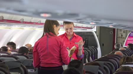 quad hd : Air stewardess serving a passenger in the airplane. UHD stock footage Stock Footage