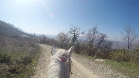 fantino : 4K Riding a POV cavallo. UHD archivi video Filmati Stock