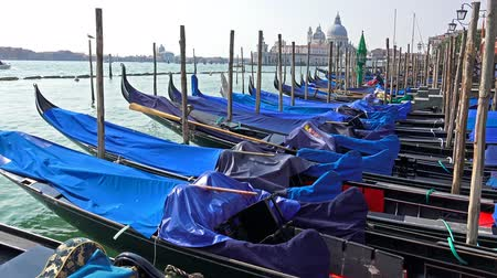 floods : Amazing 4K scenery with Gondolas in Venice, Italy with view of Santa Maria della Salute. UHD steadycam stock video
