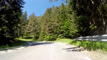 otopark : TIMELAPSE POV drive through ALPS forest woods rural road. UHD 4K stock footage Stok Video