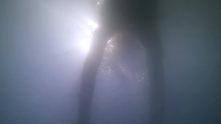 parlayan : 4k Silhouette swimming underwater in dirty polluted water with sun rays shining Stok Video