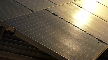 fotovoltaica : solar panels roof at sunset, photovoltaic green energy generator