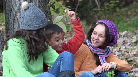 três : Three kids chatting sitting in forest with autumn leaves