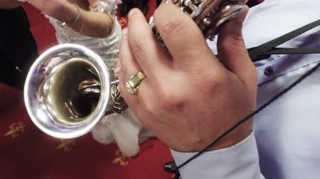 jazzman : Saxophone Jazz Music Instrument Saxophonist with Baritone Sax player on wedding party Stock Footage