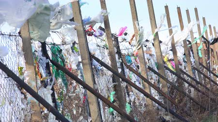 сумка : Plastic bags blown by wind from a landfill Стоковые видеозаписи