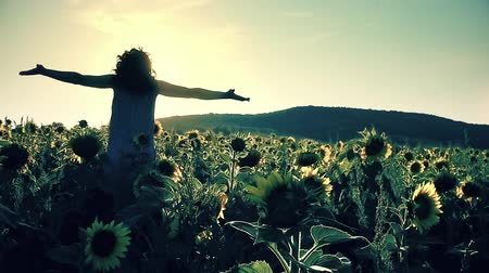 Successful girl on sunflower field against sunset sun with hands  raised. Freedom concept. Happy woman outdoors. Harvest. Sunflowers field in sunset. Slow motion Stock Footage