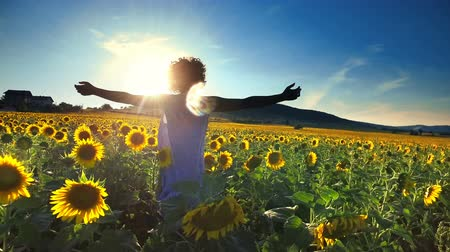 Young woman walking through sunflower field wih hands wide open backlit by sunset sun Stock Footage