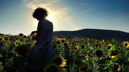 Female agronomist controls the quality of sunflower, Women in the sunflower field with hands open toward sunset, Sunflower quality check, Sunflower flowers, Woman with a hat, slow motion Stock Footage