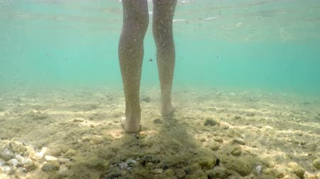 cserepezés : Underwater folowing of female feet walking on rough sea floor bed with stones Stock mozgókép