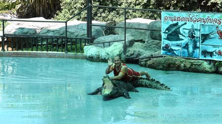 bravery : Chon Buri THAILAND  January 1 2015: crocodile show at crocodile farm. This exciting show is very famous among among tourist and Thai people