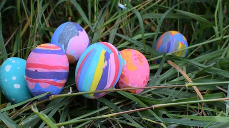 dekoracje : Easter eggs in Green Grass. Selective focus.
