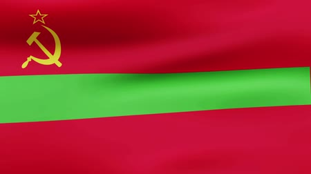 film şeridi : Loop animated waving flag of Transnistria