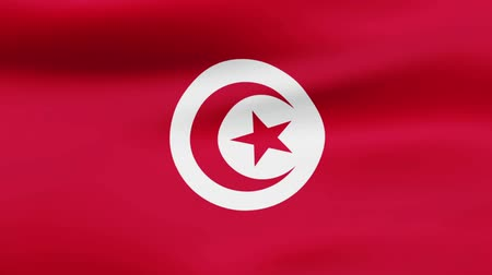 film şeridi : Loop animated waving flag of Tunisia