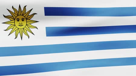 film şeridi : Loop animated flag of Uruguay