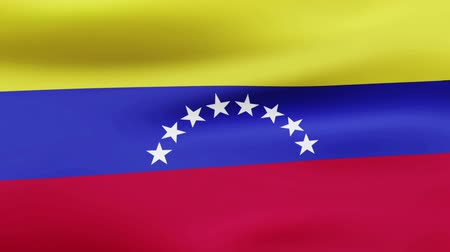 film şeridi : Loop animated flag of Venezuela Stok Video
