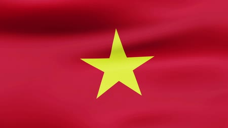 film şeridi : Loop animated flag of Vietnam Stok Video
