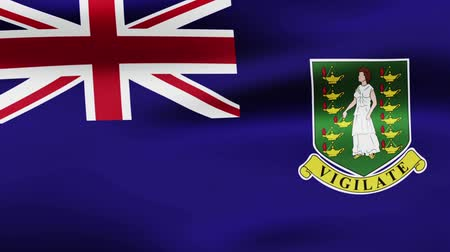 film şeridi : Loop animated flag of Virgin Islands UK Stok Video