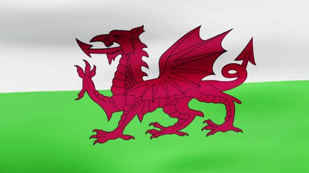 film şeridi : Loop animated flag of Wales Stok Video