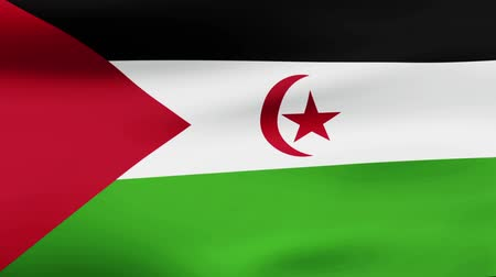 film şeridi : Loop animated flag of Western Sahara Stok Video