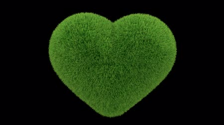 efektywność : Heart made of grass looping with matte