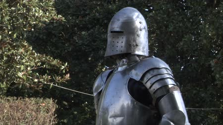 zbroja : Fighting medieval knights Wideo
