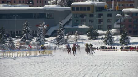 horserace : The horserace Grand Prix on the White Turf in the magnificent scenery of the Upper Engadine on February 23rd, 2014 in St. Moritz Switzerland Stock Footage