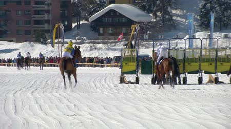 horserace : Horses in slow motion at the starting gate before the White Turf 2014 Grand Prix on February 23rd, 2014 in St. Moritz Switzerland