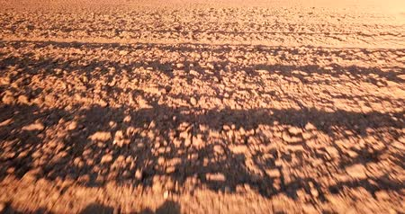 furrow : Furrows row pattern in a plowed field whit red soil