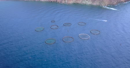 Aerial view of a fish farm of sea bream and sea bass in the Mediterranean Sea