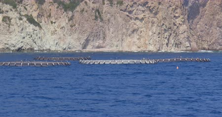 The cages of an aquaculture in the Mediterranean Sea Стоковые видеозаписи